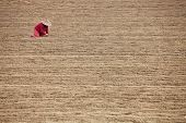 picture of south east asia  - Farmer in the field   - JPG