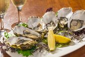 stock photo of oyster shell  - Fresh oysters with lemon wedge and champagne - JPG