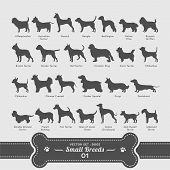 stock photo of chihuahua  - 26 small breed dog silhouette vectors in alphabetical order - JPG
