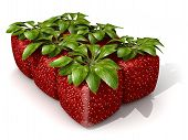 Pack Of Six Cubic Strawberries