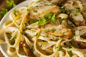 foto of pasta  - Homemade Fettucini Aflredo Pasta with Chicken and Parsley - JPG