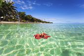 image of off-shore  - Hibiscus flower floating off tropical Fiji island - JPG