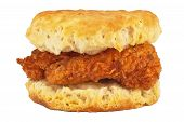 image of southern fried chicken  - Fried chicken breast fillet on a buttermilk biscuit. ** Note: Soft Focus at 100%, best at smaller sizes - JPG