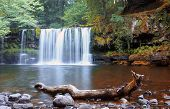 pic of trout fishing  - the nature of England, a journey through England, hike in the forest, trout fishing, fishing in the river, forest waterfall, autumn forest ** Note: Visible grain at 100%, best at smaller sizes - JPG