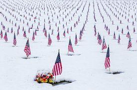 foto of veterans  - Snow - JPG