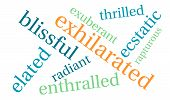 picture of rapture  - Exhilarated word cloud on a white background - JPG