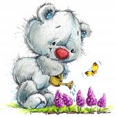 pic of teddy  - Toy Teddy bear and flowers - JPG