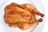 picture of roast chicken  - Tasty Crispy Roast Chicken on white plate  - JPG