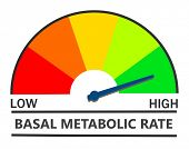 Metabolic rate indicator poster