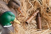 stock photo of gadwall  - duck decoy with stuffed and some calls - JPG
