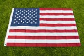 Make America Great Again. American Flag Green Grass Background. National Symbol. American Citizenshi poster