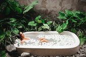 Woman Relaxing In Round Outdoor Bath With Tropical Flowers, Organic Skin Care, Luxury Spa Hotel, Lif poster