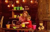 Mother Concept. Mother And Little Child Potting Flower. Mother And Son Replant Flower In New Pot In  poster