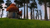 picture of portobello mushroom  - mushroom fairy house - JPG