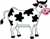 picture of moo-cow  - Vector illustration of smiling cow cartoon isolated on white - JPG
