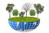 foto of afforestation  - Concept Environment Afforest For The Earth On isolated Background - JPG