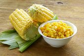 Canned corn in a bowl, and fresh cobs