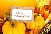image of fall decorations  - Happy Thanksgiving tag with pumpkins and autumn decor over white - JPG