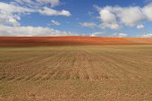 stock photo of tierra  - Farm field and blue sky with clouds in Tierra de Campos - JPG
