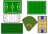 Sport fields vector illustration
