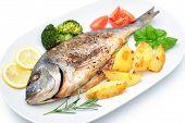pic of potato-field  - Sea bream fish with potato on white plate  - JPG