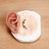stock photo of human ear  - Metal Clip Closure Artificial Human Ear on Wooden Table - JPG