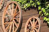 pic of stagecoach  - Carriage wheels hanging on wood board wall with green ivy - JPG