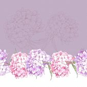pic of hydrangea  - Beautiful Pink Hydrangea Vintage Seamless Floral Border Botanical Vector Illustration - JPG