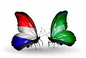 foto of holland flag  - Two butterflies with flags on wings as symbol of relations Holland and Saudi Arabia - JPG