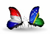 stock photo of holland flag  - Two butterflies with flags on wings as symbol of relations Holland and Solomon Islands - JPG