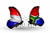 image of holland flag  - Two butterflies with flags on wings as symbol of relations Holland and South Africa - JPG