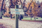 pic of sign board  - Rustic wooden sign in an autumn park with the words Bad  - JPG