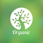 picture of tree leaves  - Organic green tree logo - JPG