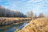 foto of tall grass  - Small river slowly flowing between banks covered with tall yellow grass - JPG