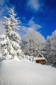 image of house woods  - Mountain hut in winter landscape in woods covered with snow - JPG