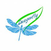 stock photo of dragonflies  - delicate dragonfly on the contour of the green leaf and the inscription dragonfly - JPG