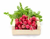 image of wooden crate  - Fresh harvested red radish in wooden crate - JPG