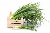 stock photo of wooden crate  - Harvested fresh spring onions in wooden crate - JPG