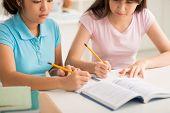 pic of homework  - Cropped image of two Vietnamese schoolgirls doing homework together - JPG