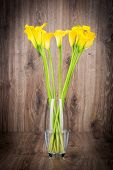 picture of calla  - Bunch of callas in the vase on wooden background - JPG