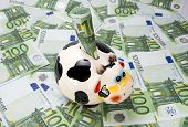 picture of cash cow  - cow a moneybox with the note of euro on a green field from euro notes - JPG