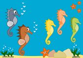 foto of seahorse  - sea life funny cartoon illustration with cute seahorses - JPG