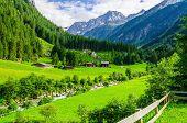 Постер, плакат: Green meadows and Alpine cottages Austria