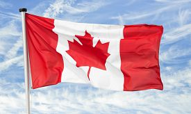 image of nationalism  - maple leaf national flag of canada against a blue cloudy sky - JPG