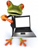 stock photo of amazonian frog  - Business frog - JPG