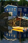picture of dory  - A yellow dory in a clam Harbour