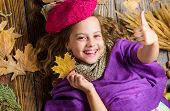 Girl Cute Child In Knitted Hat Lay Wooden Background Fallen Maple Leaves Top View. Autumn Fashion Ha poster