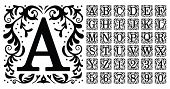 Vintage Monogram Letters. Decorative Ornamental Ancient Capital Letter, Old Alphabet Monograms And F poster