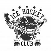 Ice Hockey Club Or College League T-shirt Print Template. Vector Ice Hockey Sport Team Mascot Badge  poster