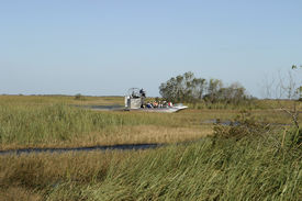 picture of airboat  - an airboat in the florida everglades with a full load of people on a tour to view alligators and other wildlife - JPG